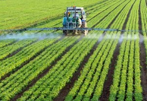 spraying-roundup